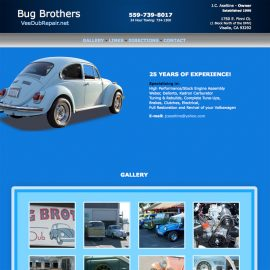 Website Design – Bug Brothers VeeDubRepair.net